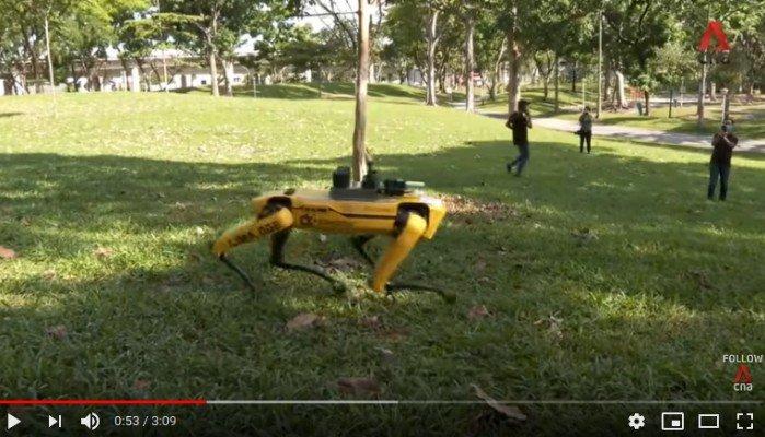 Robot dog promoting social distancing Singapore.m4v