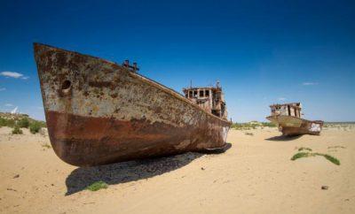 Aralzee